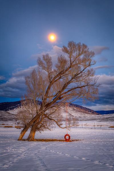 """Swinging Under a Full Moon"" Jacks Cabin, Colorado"