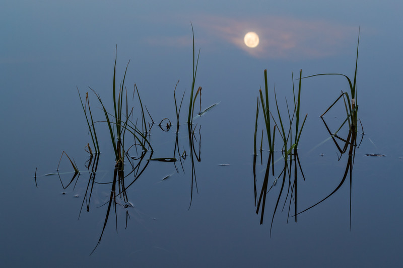 """Moon Reflecting on Pond"" Ohio Creek, Colorado"