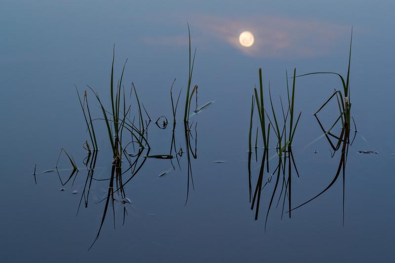 """Moon Reflecting on Pond"" Ohio Creek, Colorado"