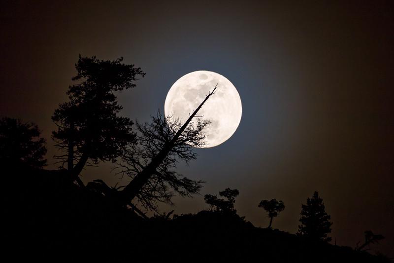 """""""Silver Moon"""", Gunnison, Colorado"""