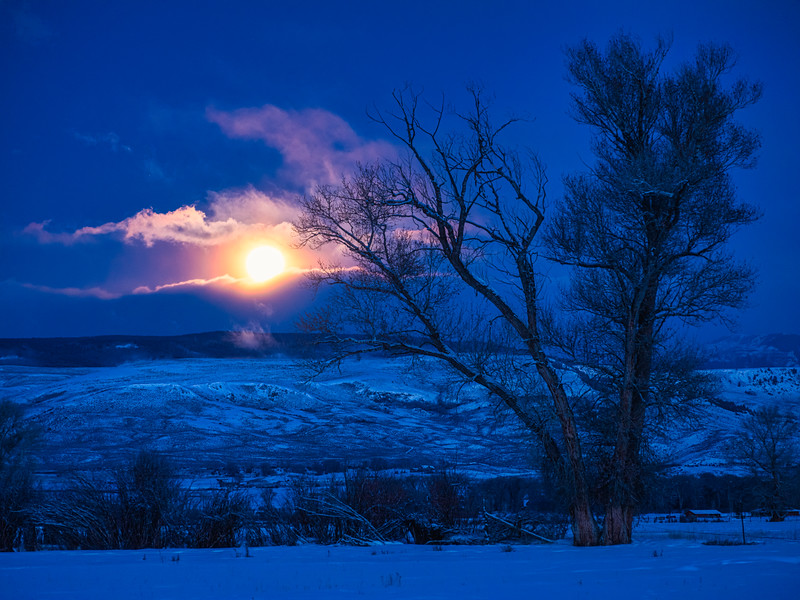 """The Full Wolf Moon"", Gunnison"