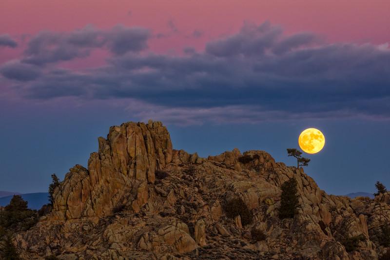 """The Perigree Super Moon"""