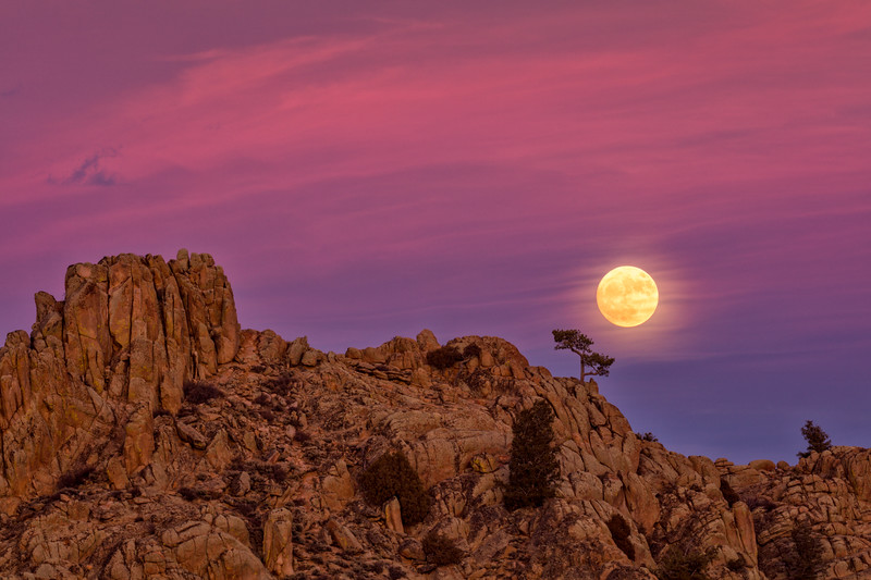 """The Full Beaver Moon Rising over Hartman Rocks, Gunnison, Colorado"