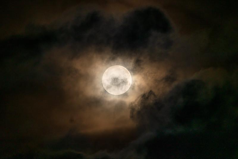 """The Snow Moon"""