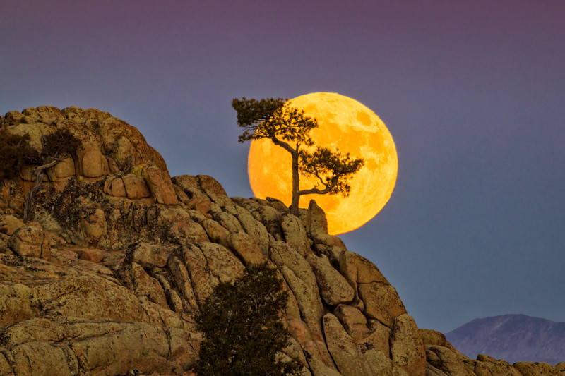 """The Perigree Super Moon"" Gunnison, Colorado"