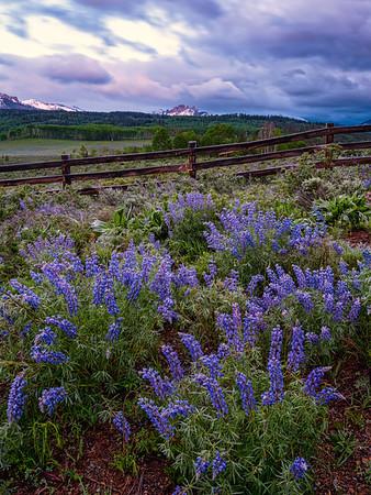 "'The castle fence"", Gunnison, Colorado"
