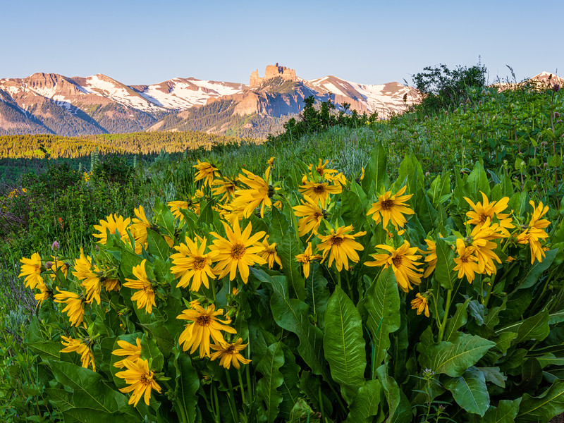 """Sunshine Castles"" Colorado"
