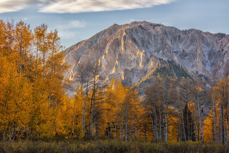 """Marcellina Mountain in the Fall"" Kebler Pass, Colorado"