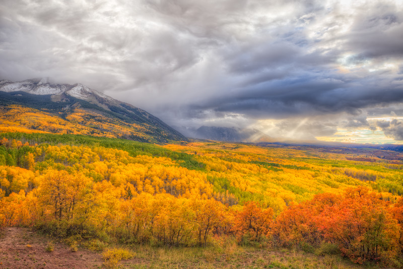 """Kebler Pass in Fall"" Kebler Pass, Colorado"
