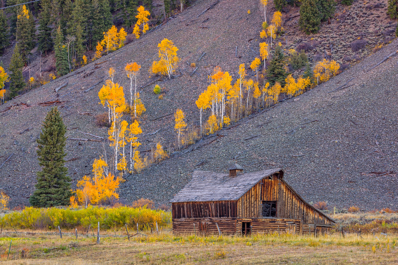 """Fall Colors and Barn"" Crested Butte, Colorado"