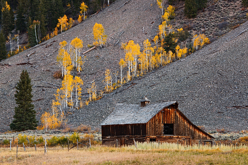 """Barn and Fall Aspen"" Crested Butte, Colorado"