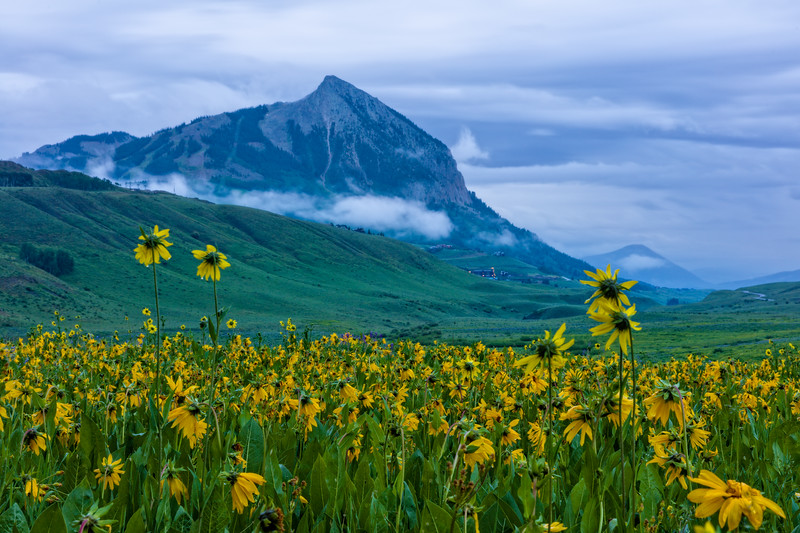 """Mist in the Mountains"" Crested Butte, Colorado"