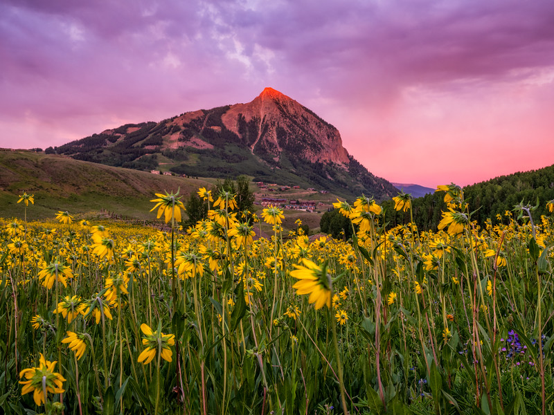 """Mt. Crested Butte"" colorado"