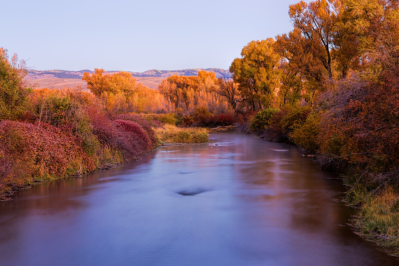 """Tomichi River Fall Colors"" Gunnison Colorado"