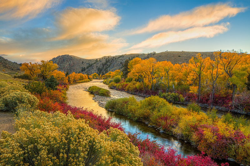 """Gunnison River Fall Colors"" Gunnison Colorado"