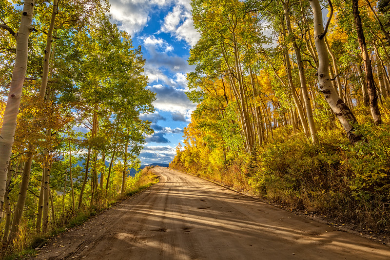 """The Fall Road"" Gothic Road,Crested Butte, Colorado"