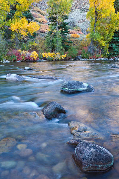"""Taylor River Colors"" Taylor Canyon, Colorado"