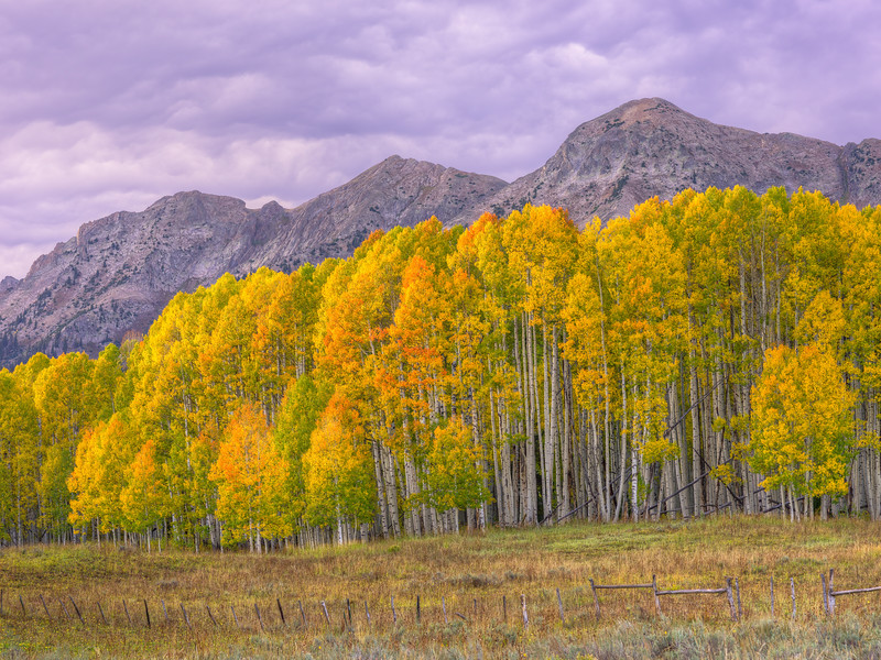 """Fall Aspen & the Anthracite Range"" Ohio Pass, Colorado"