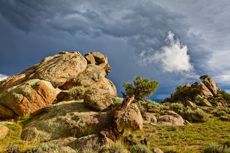 """Tree, Rocks & Cloud"" Hartman Rocks Gunnison, Colorado"