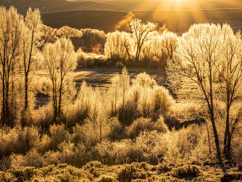 """ Frosty Sunrise"", Gunnison, Colorado"