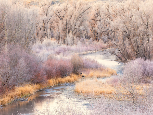 """A River Runs Through"" Gunnison, Colorado"