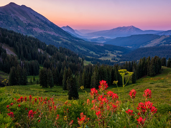 """Washington Gulch Paintbrush "" colorado"