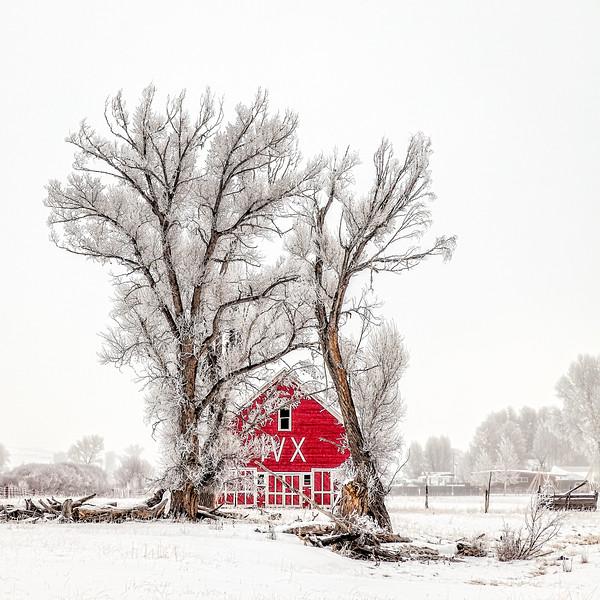 """IVX Barn"" Gunnison, Colorado"