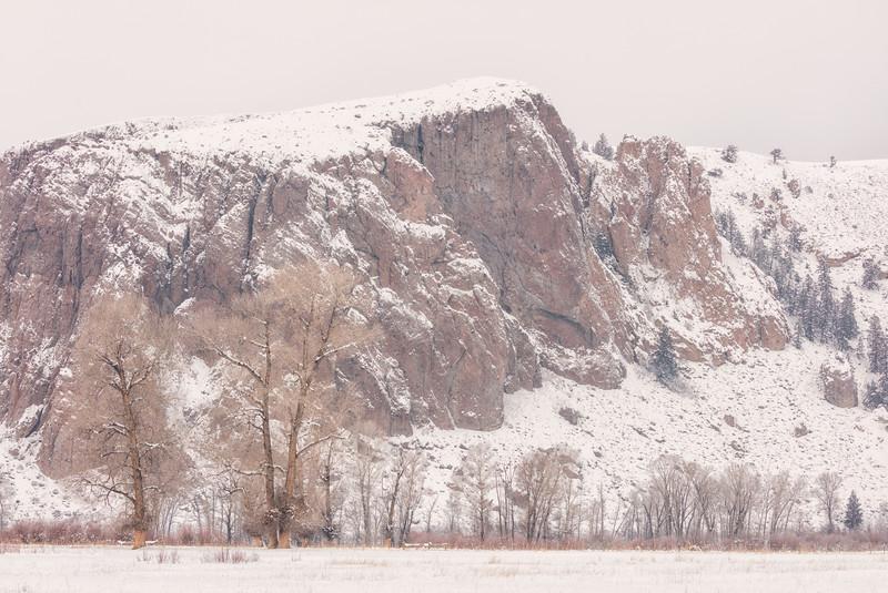 """""""Palisades in the Snow"""" Gunnison, Colorado"""