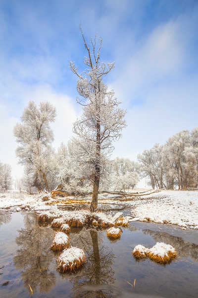 """Winter"" Gunnison Colorado"