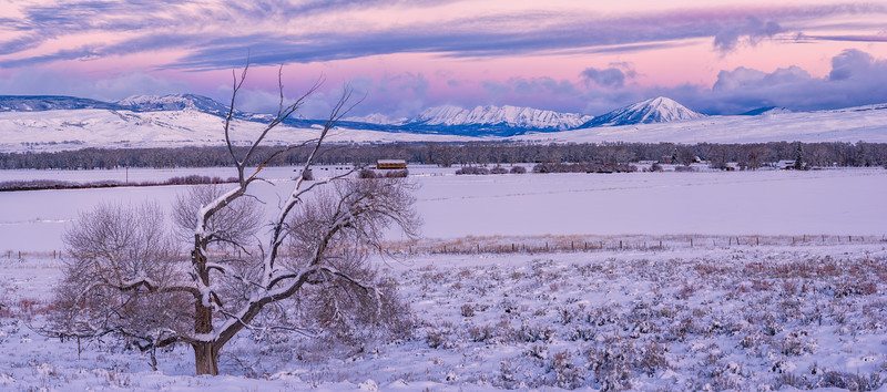 """Ohio Valley in the Snow"" Gunnison, Colorado"