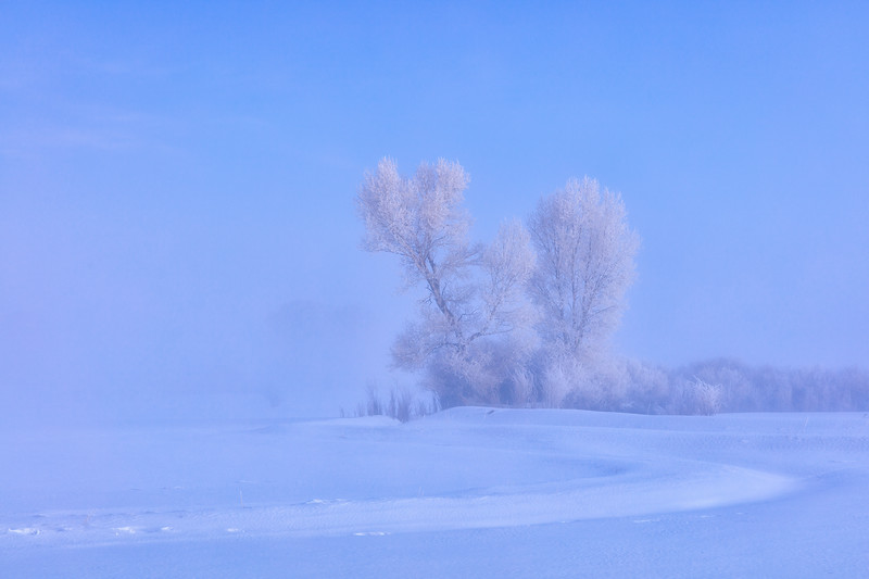 """Cold & Frosty Morning"" Gunnison, Colorado"