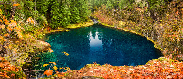 "Tamolitch Falls, aka ""Blue Pool"""