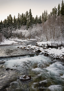 Breitenbush River, January 2013