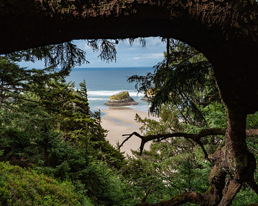 Glimpses of a hidden beach.  Ecola State Park, Oregon coast.
