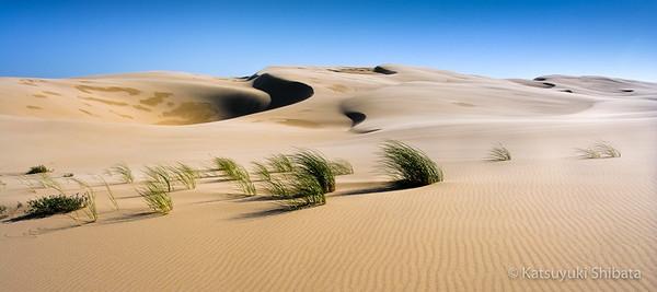 Umpua Dunes