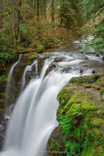 DF.4182 - Majestic Falls, McDowell Creek Falls County Park, OR.