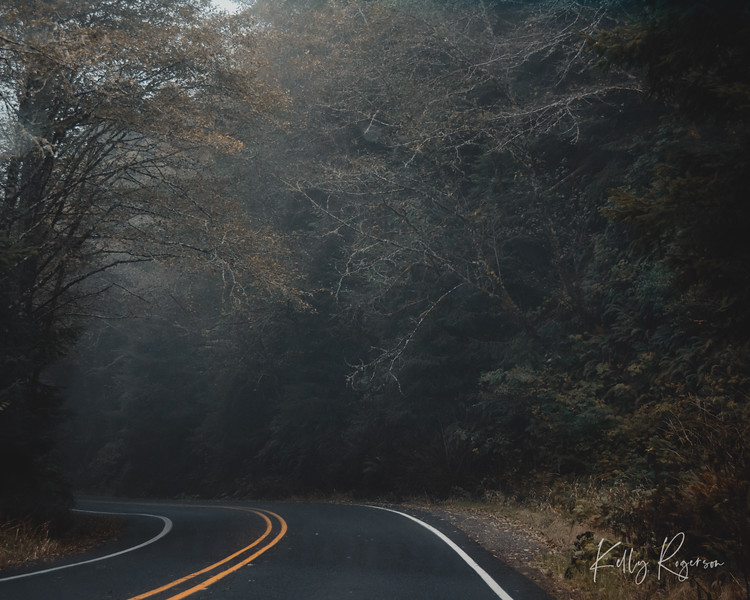 Around the corner, a road that takes you on a new journey. Oregon.
