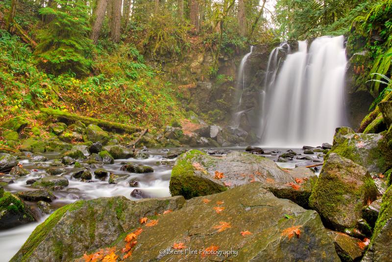 DF.4186 - Majestic Falls, McDowell Creek Falls County Park, OR.
