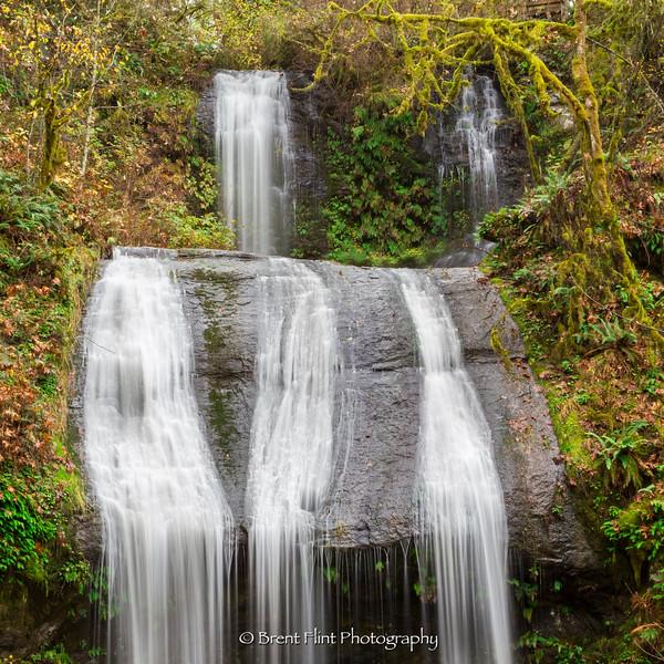 DF.4180 - Royal Terrace Falls, McDowell Creek Falls County Park, OR.