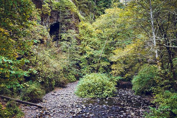 A stroll through the Columbia River Gorge.