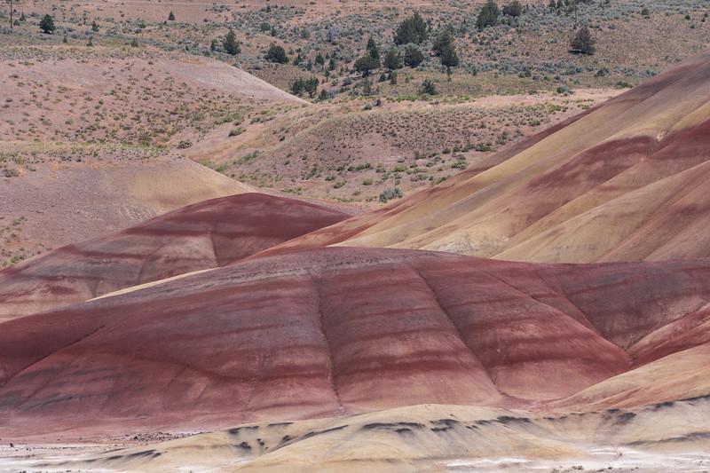 Painted Hills VIIII