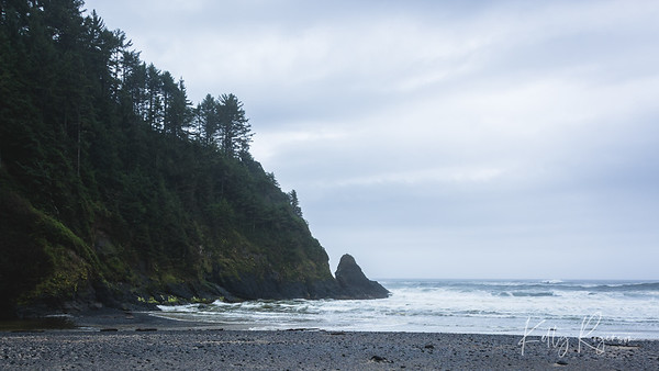 Heceta Head, Oregon Coast. The beach where you start your walk up to Heceta Head Lighthouse. It's a perfect bit of an inlet where you can have a picnic, enjoy the waves and even be a bit protected from the wind. Another gorgeous and somewhat foggy day on the Oregon Coast.
