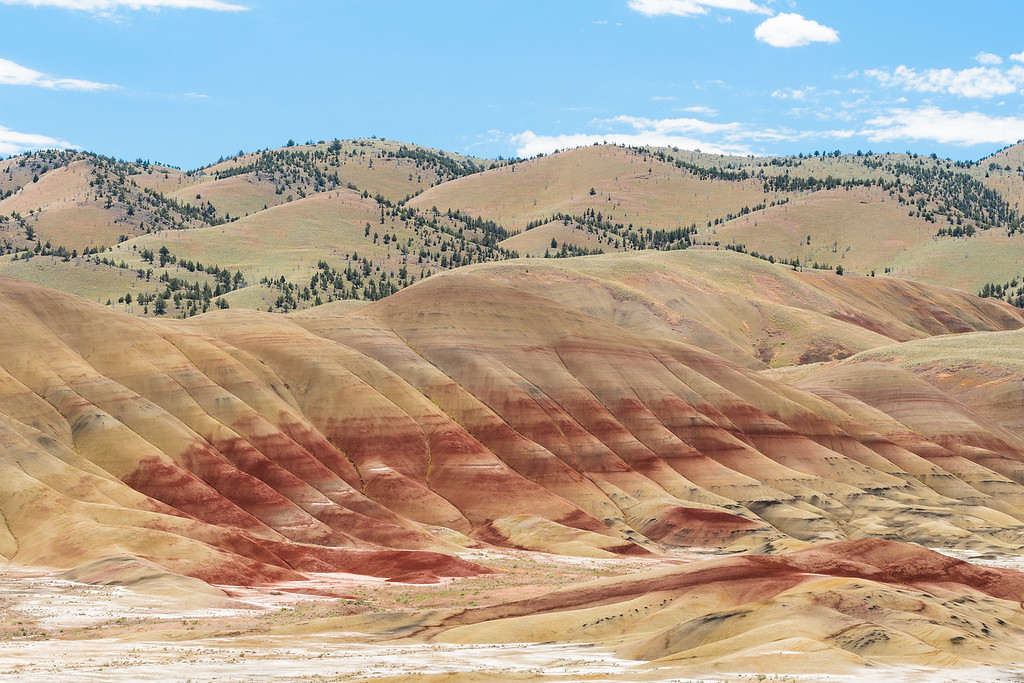 Painted Hills XII