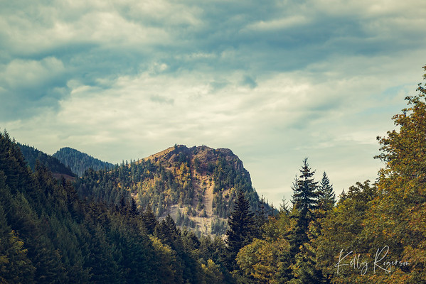 Along the Columbia River Gorge Highway, there's often amazing scenery around every corner. Tall mountains, sheer cliffs and steep rocky ledges. And among it all is the incredibly lush forest. Took a bit of a different take on this photo than my normal style but I really felt this deserved something different and unique.