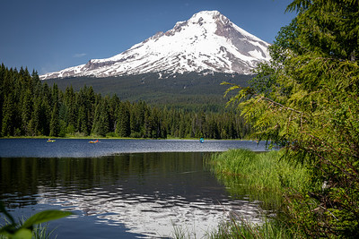 Mt Hood from Trillium Lake -24