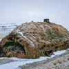 Haus von Leif Eriksson