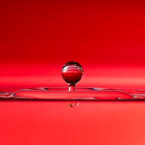 Splash of Red (square)