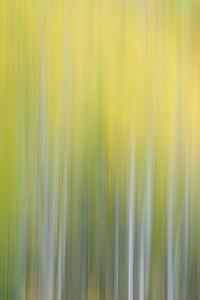 Aspen Abstract 2