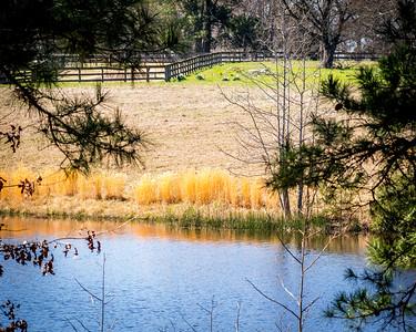 Fambreau's Pond