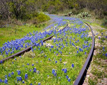Bluebonnet Railroad